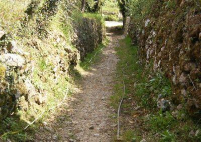 Mejora del camino El Trichuelo