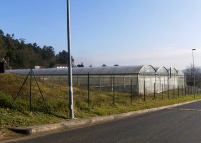 Instalación de invernadero